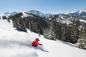 ski telliride montrose